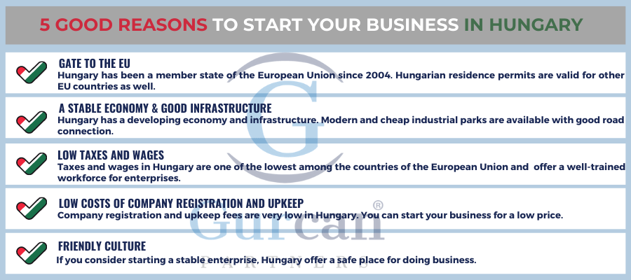 5 reasons to starting business in Hungary